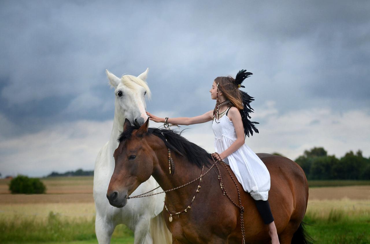 Dem Pferd auf Augenhöhe begegnen